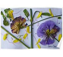 Botanical Collage 4 Poster