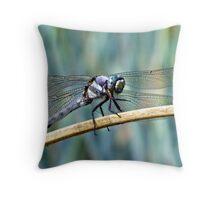 Dragon Blue 1 Throw Pillow
