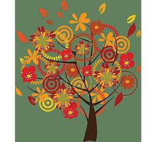 Autumn orange tree Photographic Print