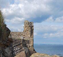 Castle Ruins by Cathy Jones