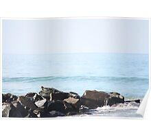Waves crash : 1 Poster