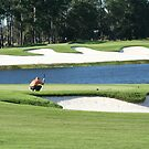 Golf Course in St Augustine  by Missy Yoder