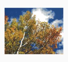 Blue Rocky Mountain Skies and Golden Aspen Trees in fall Kids Clothes