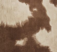 Brown Cowhide by Gypsykiss