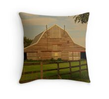 I could Use Some Paint ! Throw Pillow