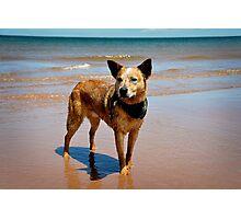 Oceanside Portrait Photographic Print