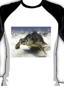 Caribbean Sea Turtle T-Shirt