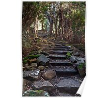 Springs Track on Mount Wellington Poster
