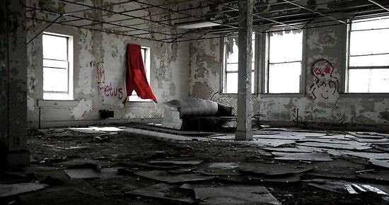 Detroit Vacancy by Malena Fryar