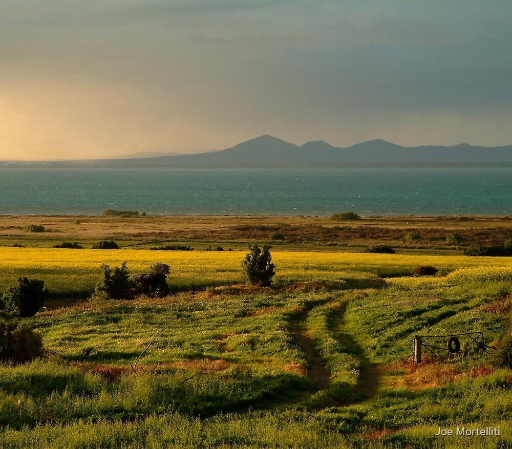 Bellarine Peninsula by Joe Mortelliti