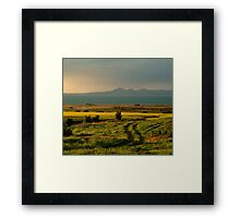 Bellarine Peninsula Framed Print