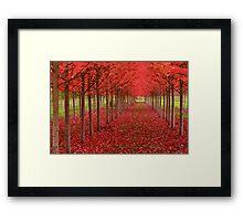 Spiritual Kloth Red Forestation by Kordial Orange Framed Print