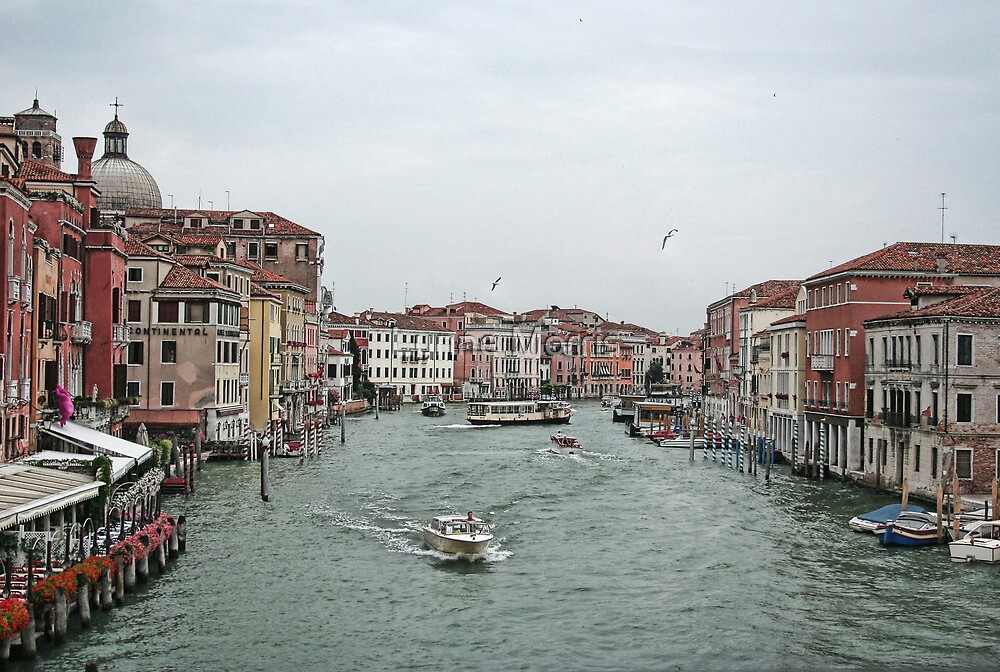 The Grand Canal by Lynne Morris