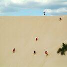 Dune Scramble,S.A. by Joe Mortelliti