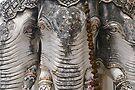 Elephant heads, Phetchaburi. by Syd Winer