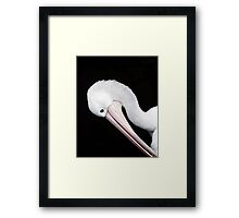 Curves - pelican portrait Framed Print
