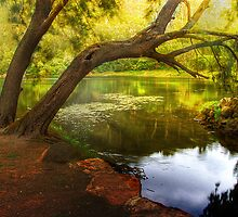 Bents Basin State Recreational Area, Greendale NSW by Jojie Certeza