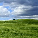 Green hills in Tuscany by annalisa bianchetti