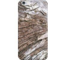 Oregon Coast Driftwood iPhone Case/Skin