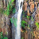 Dagg Falls (Panoramic) by Susan Brown