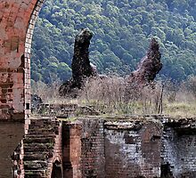 Lithgow Blast Furnace - Slag Dump by Bev Woodman