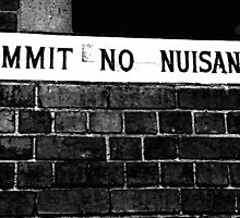 Nuisance by Lois Romer
