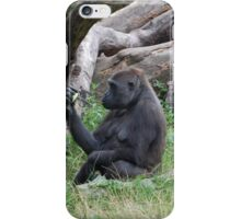 Curiosity of the Primate iPhone Case/Skin