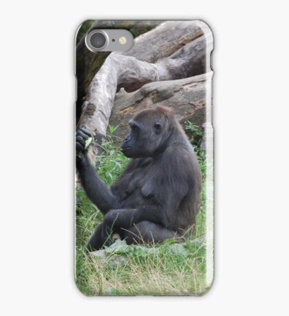 Curiosity of the Primate iPhone Case/Skin