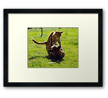 The Amazing and Funny Acrobatic Duo! Framed Print