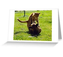 The Amazing and Funny Acrobatic Duo! Greeting Card