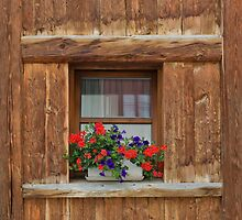 Wooden Window and Geraniums by Yair Karelic