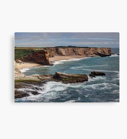 Panther Beach Canvas Print