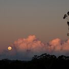 Winter Moonrise by JeniNagy