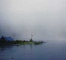Blue tent in the morning fog by Bertspix1