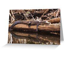 big log gator Greeting Card