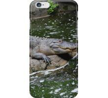 Gator Day iPhone Case/Skin