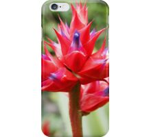 Red Tropical Plant iPhone Case/Skin