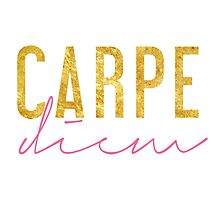 Carpe Diem - Seize the Day - Pink and Gold by racheladditon