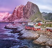 Reine's Changing of the Seasons by Kristin Repsher
