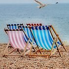Deckchair Gull by Karen Martin