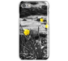 Yellow Daffodils iPhone Case/Skin
