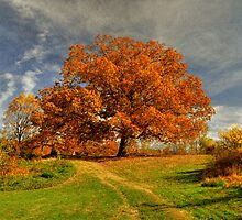Autumn Picnic On The Hill by Lois  Bryan