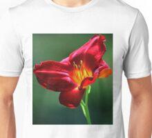 Beauty for a Day (Hemerocallis) Unisex T-Shirt