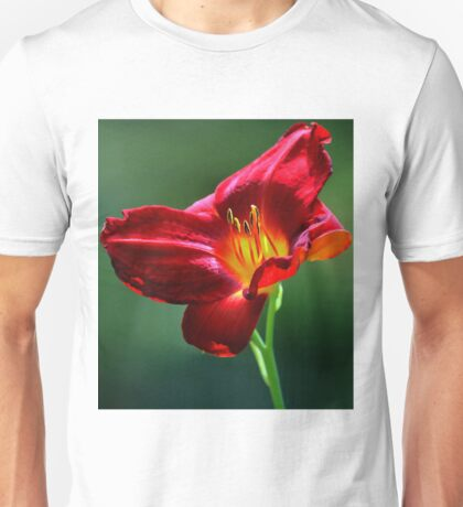 Beauty for a Day (Hemerocallis) Unisex T-Shirt
