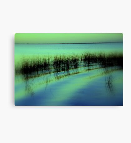 I had a Dream  Canvas Print