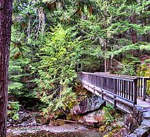 Avalanche Falls Walkbridge by rocamiadesign