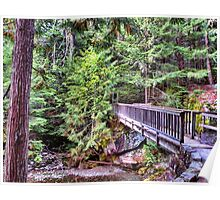 Avalanche Falls Walkbridge Poster