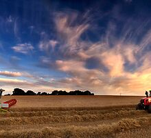 Harvesting barley, Norfolk, UK by Kathy Wright