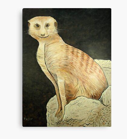 Monty Meerkat Canvas Print