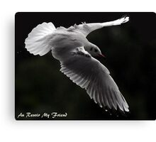 Cards Canvas Print